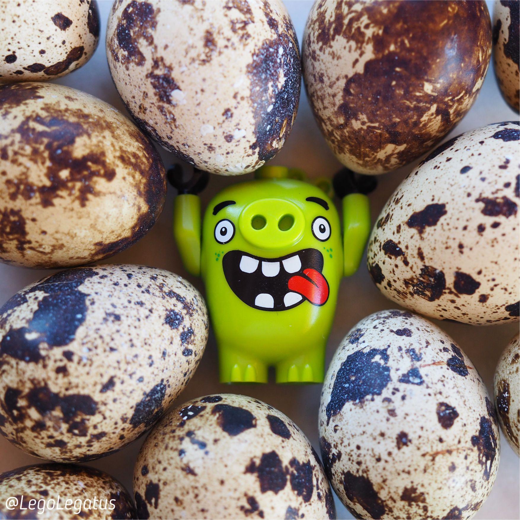 Щастья привалило поросенку из энгри бердс! LEGO® Angry Birds